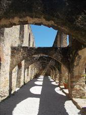The walkway: by janicemorris, Views[26]