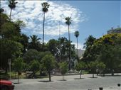 A park in Salta.  The presence of public park benches, rubbish bins and green grass which isn´t fenced off made for a welcome change from Bolivia.: by jason_kidd, Views[269]