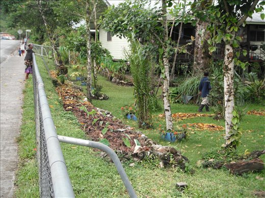 House garden - Airport and more of Tabubil - Papua New Guinea ...