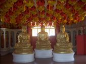 Chinese Temple - Penang: by jazz81, Views[241]