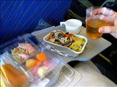 Gourmet Plane Cuisine: Chicken Noodles, Fruit & Salmon Salad.