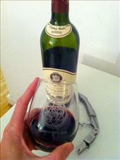 Enjoying a glass of Arizona's finest: by jc-dc, Views[131]