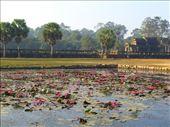 Angkor Wat: by jciecko, Views[175]