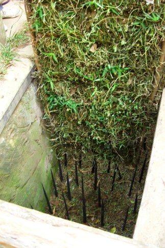 Spiked trap at Cu Chi Tunnels