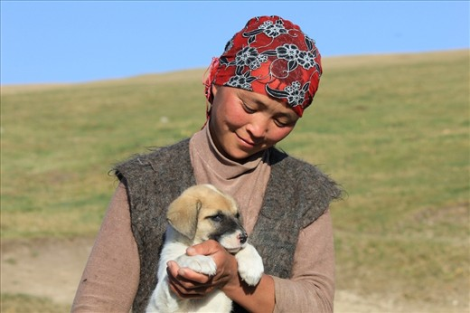 Dogs are very important for herding the cattle over vast stretches of land. Herding however, is mainly a man's job. The women do most of their work in and around the yurts. The daughter of a family living in a yurt in the highland area around Song-Kul lake, proudly shows one of their puppies. The pup will grow out to be an excellent cattle driver. 