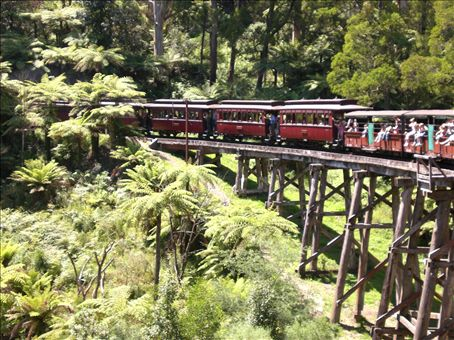Puffing Billy at Dandenongs Forest, 1hr drive north Melbourne