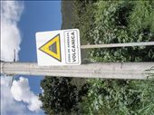 Caution sign with volcano erupting to the left: by jenng1234, Views[193]