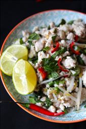 Laap Kai, Fresh Laos Chicken Salad : by jenniecranham, Views[149]