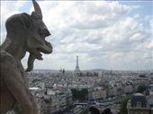 Vue du haut de la tour de la cathédrale Notre Dame de Paris: by jeremy_watso, Views[669]