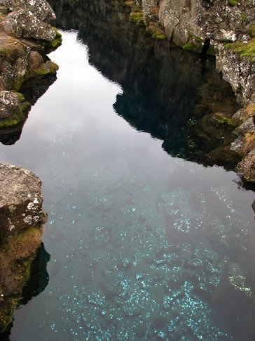 at the thingvellir national park, the plates under the ground are continually moving. you can see the huge gaps and fissures in the land. the water was so clear you could see the coins on the bottom