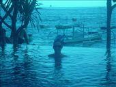 Waters edge pool at the hotel, Kutut Losman: by jesseandjustine, Views[187]