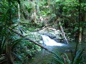 Terania Creek and Protester Falls: by jessicaandluke, Views[395]