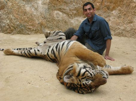 Me petting a tiger's tummy as it streches out.