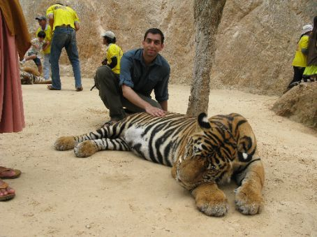 Me stroking one of the big cats.