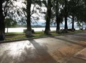 By the river running alongside Kampot, southern Cambodia - where I stopped to read my book for a while.: by jfernandes, Views[2706]