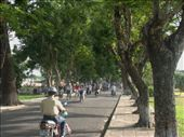 Streets on the north side of the river are lined with trees - far more atmostpheric than the concretized southern part of town.: by jfernandes, Views[349]
