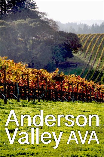 Anderson Valley Wine Country in California