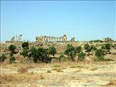 Volubilis Roman Ruins: by jimandnicadventure, Views[567]
