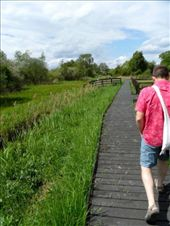 Sam walks along the wetlands of Wicken Fen.: by jimboandjanet, Views[241]