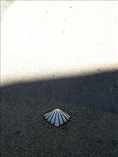 The scallop shell to show the pilgrim route to the Church: by jimboandjanet, Views[1174]