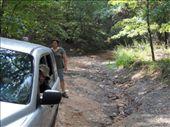Bush bashing in the Green Ridge State Park.: by jimboandjanet, Views[247]