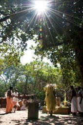 Seen above is the <i>kavu</i>, the village shrine where the ritual is performed. The theyyam chants and performs rituals to the deity. Sacrifices are also made. Seen alongside are the temple musicians.: by jithinrk, Views[298]