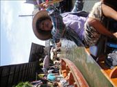 Our paddle boat driver a the Floating Market.  She gave us many Thai treats to try :): by jlessing, Views[88]