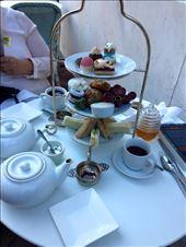 Gryphon Tea Room: by jm212, Views[59]