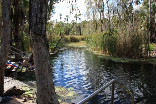 The Bitter Springs thermal pool at Mataranka