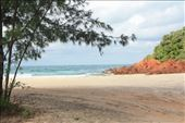 Turtle Beach south of Nhulunbuy: by jmandjm, Views[164]
