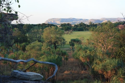 View looking north over the wetlands from Ubirr Rock in North East Kakadu