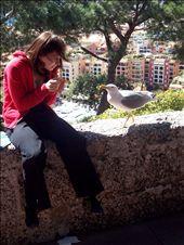 Jenny talks with a mouette from Monaco. Huge bird  Jenny parle le monégasque avec une énorme mouette.: by jmoison, Views[228]
