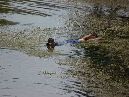 thai boys in river snorkelling for......? your guess as good as ours..