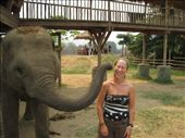 elephant kisses are very sloppy!!!!: by jo_and_matt, Views[196]