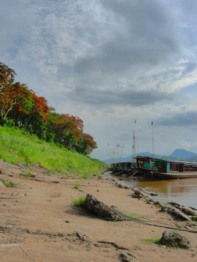 house boats on the mekong...
