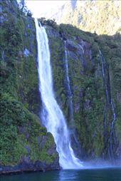 waterfall, Milford Sound: by joannah_metz, Views[114]