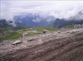 by joanneaustralia, Views[106]