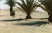 A little shade; Namib Desert: by johnandconnie, Views[257]