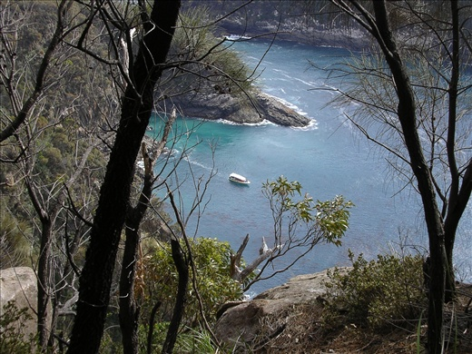 Bruny Island Cruise from Fluted Cape walk