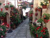 Alley way, Spello Umbria: by johnsteel, Views[105]