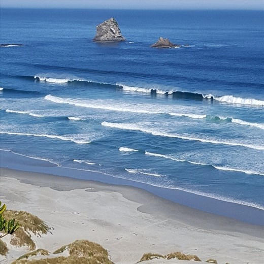 Victory Beach near Dunedin