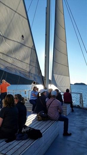 On board The Navigator Doubtful Sound