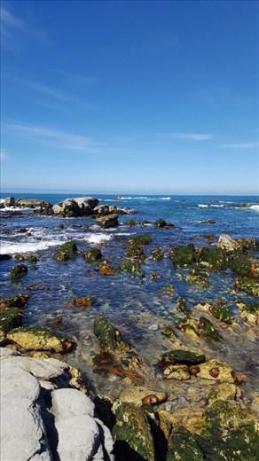 Sea bed rise after earthquake Kaikoura