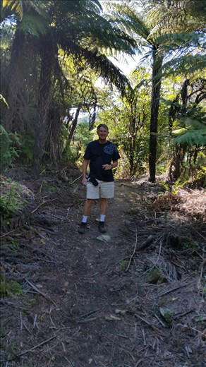 Walking part of Queen Charlotte track