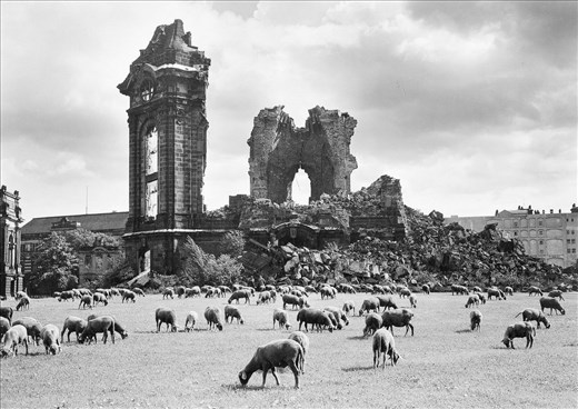 Frauenkirche after bombing. Photo from 1960's
