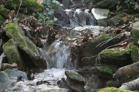 feeder stream to the river Wear in winter
