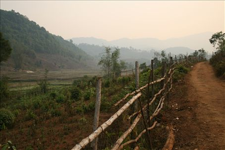 Trekking through the tropical scenery of hilly northern Thailand