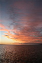 Taken from the boat, Kingfisher 1 on the way back to Hervey Bay from Fraser Island: by jonnygo, Views[315]