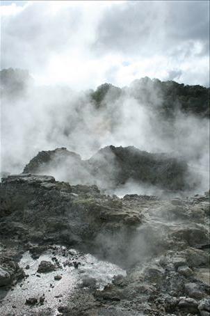 Hells' Gate - Rotorua
