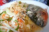 A pirhana lunch: by jonnygo, Views[4390]